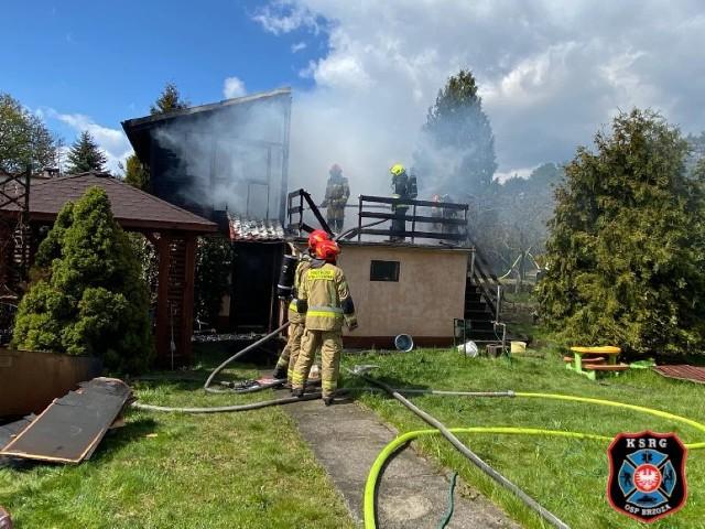 Akcja gaśnicza trwała w Prądocinie około dwóch godzin, niestety - domek letniskowy spłonął