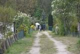 Działkowiec z Zielonej Góry: praca w ogrodzie jest lekarstwem! Prosimy o dofinansowanie inwestycji na działkach w budżecie obywatelskim
