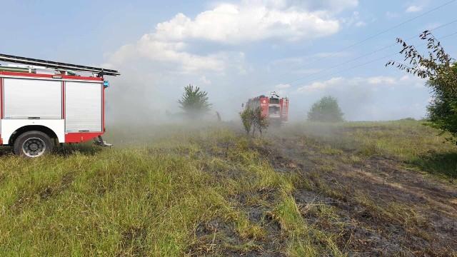 We wtorek o godz. 12:37 jednostka OSP Złocieniec została zadysponowana do pożaru traw do miejscowości Lubieszewo. W akcji brali udział także strażacy z OSP Lubieszewo oraz z PSP Drawsko Pomorskie. Zobacz także: Białogard: Łabędzie na DK nr 6. Eskortowała je policja i WOPR