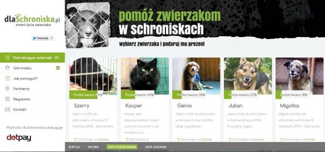 Dzięki tej stronie zwierzęta ze schronisk mają szansę na konkretną pomoc.