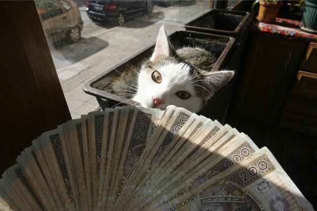 Zdobywaj wiedzę o finansach i wygraj czytnik e-booków