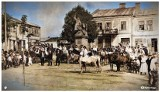 Taki był Tarnobrzeg - tych archiwalnych zdjęć jeszcze prawdopodobnie nie widzieliście!