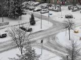Łomża zasypana śniegiem. Policja apeluje o ostrożność na drogach [zdjęcia]