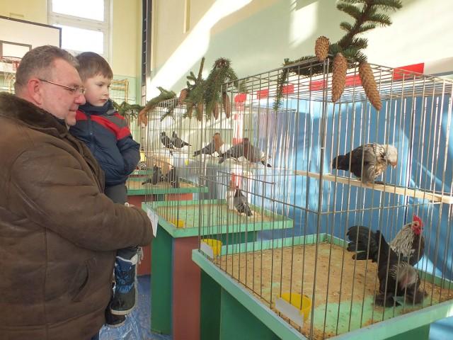 Wystawę gołębi i domowego ptactwa ozdobnego zwiedza Jaś Jantos ze Starachowic, z dziadkiem Wojciechem
