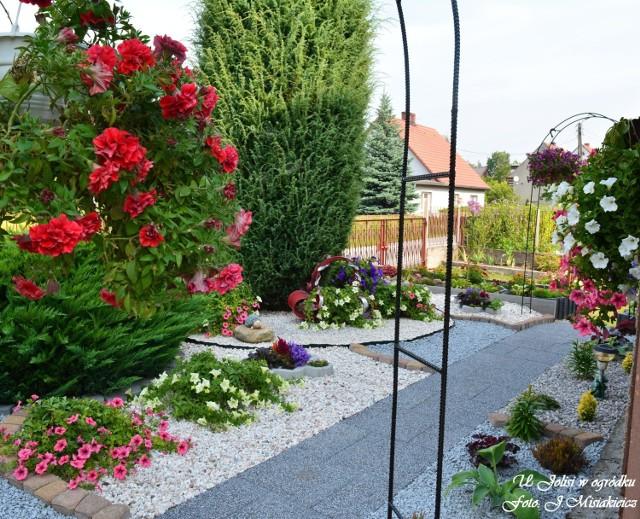 Ogród Jolanty Misiakiewicz z Łagowa
