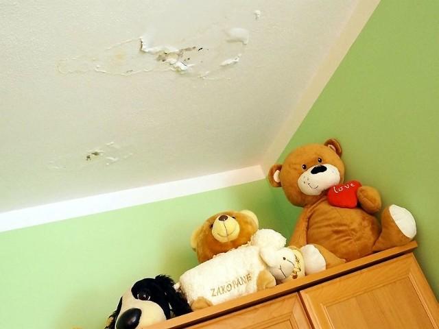Wilgotne zacieki na suficie dziecięcego pokoju. Wilgotne zacieki na suficie dziecięcego pokoju. Co ciekawe, mieszkanie wcale nie znajduje się na ostatnim piętrze. Deszczówka spływa tam tylko sobie znanym szlakiem...