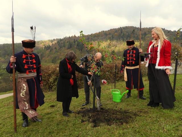 Zasadzili drzewko miłości w muszyńskich ogrodach w drugą rocznicę ślubu
