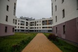 Miasto Białystok nie będzie budowało bloków komunalnych w okolicach ul. Bema i Depowej. Powołuje się na koronawirusa (zdjęcia)