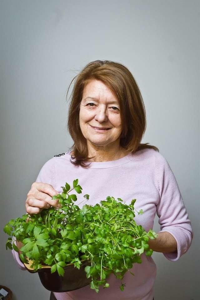 Dr Krystyna Stepczyńska-Szymczak: - Rośliny hodowlane są jak jedynaki, i to chowane przez nadopiekuńcze matki