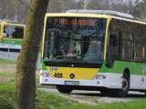 Dodatkowe linie autobusów, także za darmo