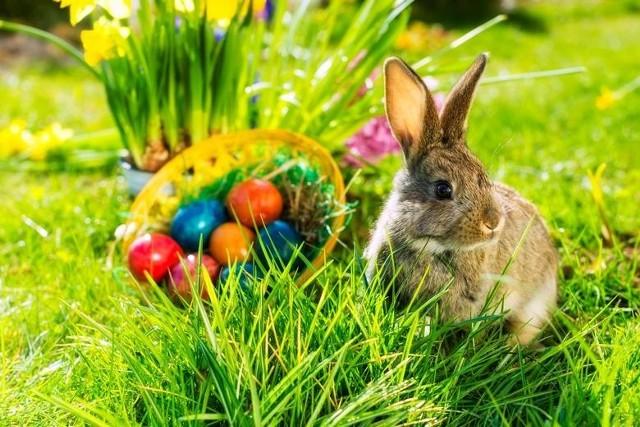 Życzenia wielkanocne 2020: oficjalne, krótkie, poważne, dla najbliższych.  Wielkanocne kartki do wysłania, piękne życzenia na Wielkanoc | Kurier  Poranny
