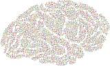 USA: Fale mózgowe sparaliżowanego zamienili w to, co chciał mówić w zdania na ekranie