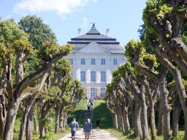 Pałac Stary w Ostromecku wzniesiono na krawędzi doliny Wisły. Podejście z doliny zdobi szpaler starych lip