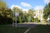 Poznań: Mieszkańcy osiedla Chrobrego bronią parku przed deweloperem. Szybkie uchwalenie planu miejscowego pomoże?