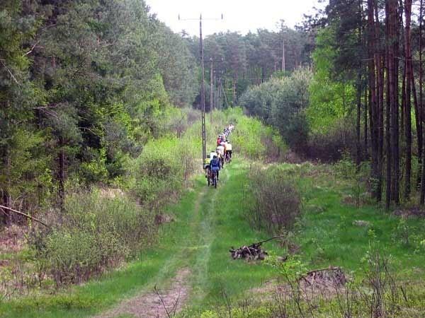 Wycieczka z Rojaksem i Nowinami 32 osoby wziely udzial w sobotniej wycieczce rowerowej. Uczestnicy przejechali 50 km trasą: Zaczernie - lasy glogowskie - Wysoka Glogowska - Stobierna - Tajecina.