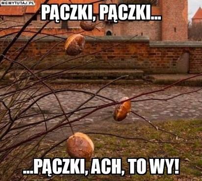 Tłusty Czwartek Oczami Internautów Zobacz Najlepsze Memy