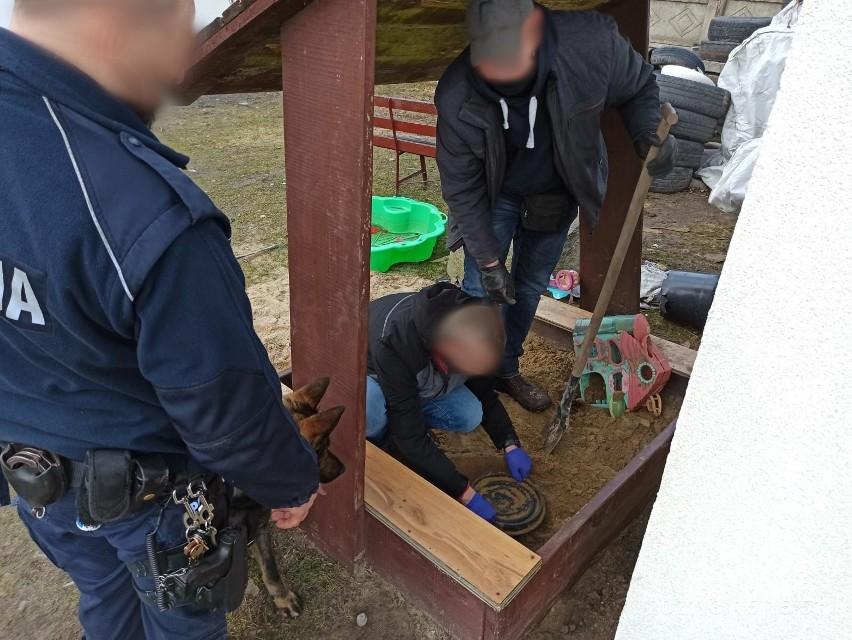 Ukrywał w piaskownicy 1,5 kg narkotyków. Wytropił je pies Lupo! ZDJĘCIA