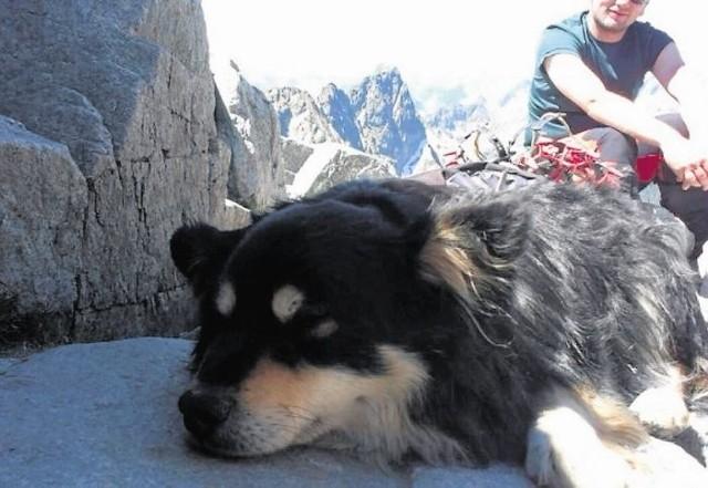Zdjęcie zrobione Rysie, gdy jeszcze przebywała na szczycie