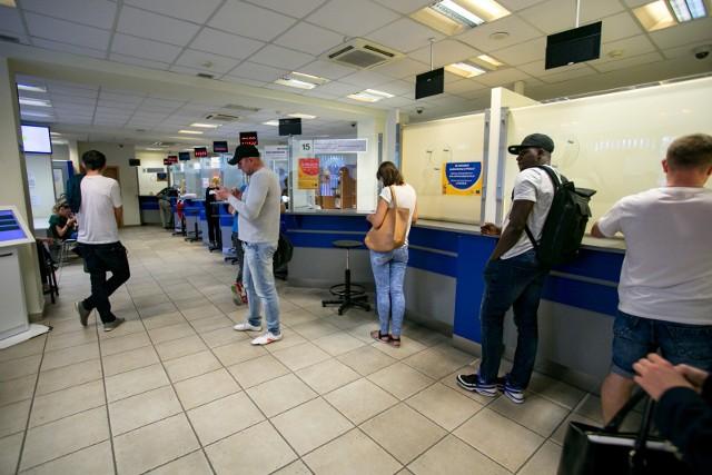 W sierpniu w porównaniu do lipca w kraju przybyło 30 tys. obcokrajowców, którzy legalnie podjęli pracę.