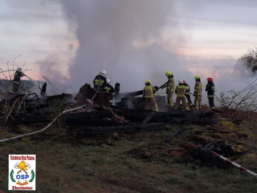 Pożar stodoły w gm. Drawsko Pomorskie. Zobacz zdjęcia z akcji strażaków