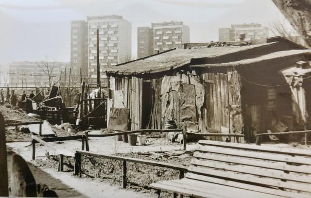 Tatary, czyli dzielnica kontrastów. Od połowy lat 50. XX w. intensywnie się rozbudowywała, nowe bloki sąsiadowały z ruderami