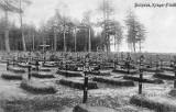 Wojenne nekropolie sprzed 100 lat zbadane i opisane. Po raz pierwszy