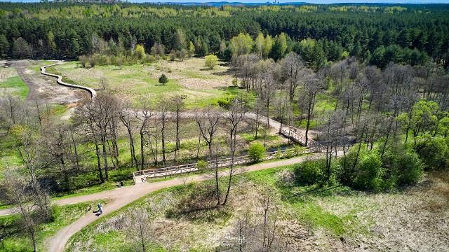 EkoBrygada oprowadzi gości Doliny Białej Przemszy w Sławkowie.Zobacz kolejne zdjęcia. Przesuwaj zdjęcia w prawo - naciśnij strzałkę lub przycisk NASTĘPNE