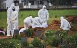 Wirus Nipah: Śmiertelne zapalenie mózgu zabija w Indiach, może wybuchnąć epidemia. Chorobę przenoszą nietoperze, szczepionka nie istnieje