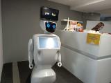Inwazja robotów w Łodzi. Siedemdziesiąt robotów opanowało Central II