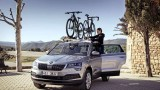 Jak wygodnie i bezpiecznie przewieźć rower samochodem?