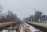 Modernizacja przystanku i stacji kolejowej w Zgierzu. Nowy peron, ławki i wiaty