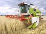 Dzierżawa gruntów rolnych – co trzeba wiedzieć?