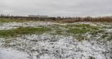 Gdańsk: Trzy rady dzielnic chcą częściowego odtworzenia jeziora Zaspa w Letnicy. Planowane są ścieżki rowerowa i rekreacyjna