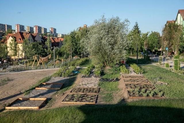 2,92 metrów kwadratowych zieleni o funkcji rekreacyjnej na mieszkańca. Na zdjęciu park Reduta
