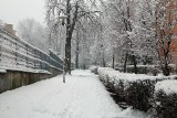 Atak zimy w Lublinie. Zobacz zdjęcia z centrum miasta!