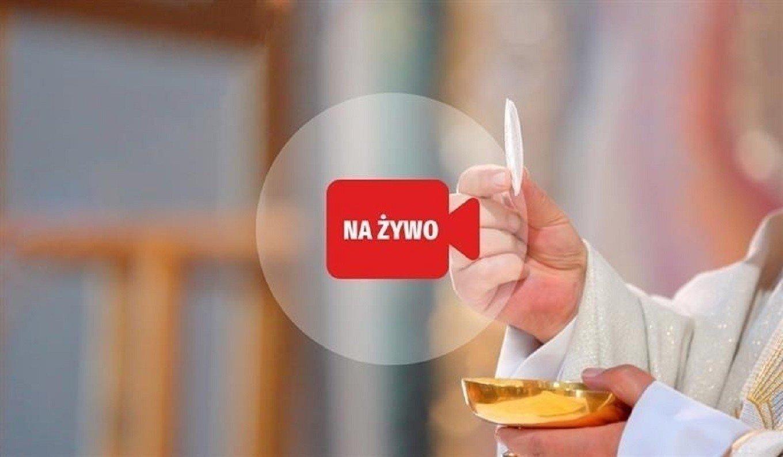 Niedziela Palmowa 5 kwietnia: Program mszy św. online i w TV. Gdzie oglądać mszę świętą? [5.04.2020 r.] | Express Bydgoski