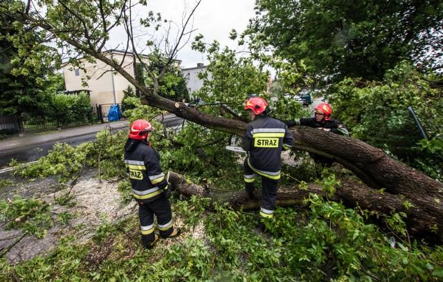Po godzinie 21 strażacy wyjeżdżali m.in. do Szklarskiej Poręby, gdzie na Zakręcie Śmierci złamane przez wiatr drzewo zablokowało jezdnię. Zdjęcie ilustracyjne