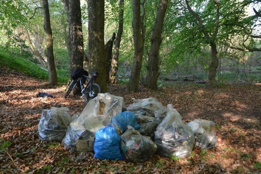 Worki ze śmieciami w lasku czekają na przyjazd ekipy z PGK, by zabrać je na wysypisko odpadów. Niestety, inne części lasku są zaśmiecone