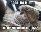 Beka ze Śląska MEMY Internet śmieje się ze Ślązaków po śląsku!