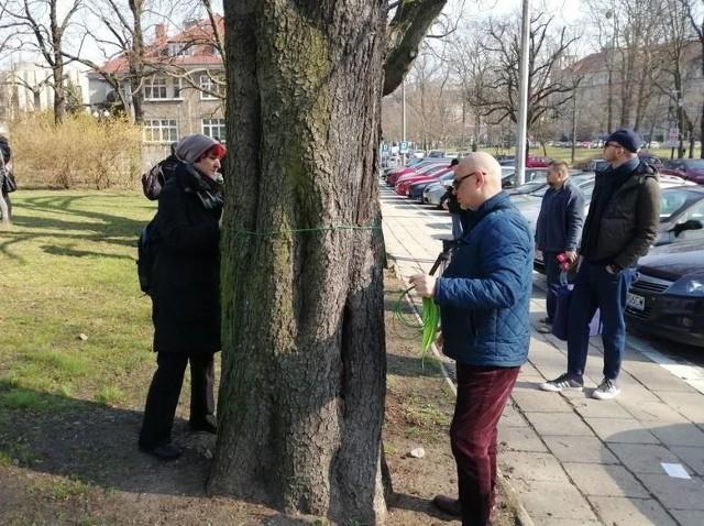 Stowarzyszenie Prawo do Miasta wystąpiło z wnioskiem o dopuszczenie ich jako strony w postępowanie administracyjnym w związku z planowaną wycinką kilkunastu dużych drzew w parku im. Henryka Wieniawskiego w Poznaniu.
