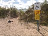 Plaże dla nudystów w Polsce. Powstają nowe, oficjalne plaże dla naturystów
