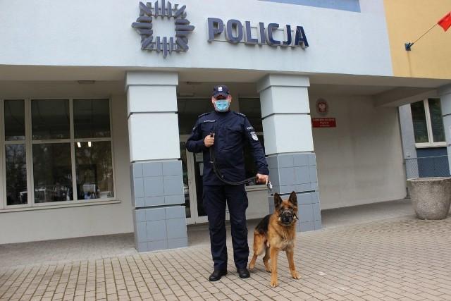 Gabon czyli Ali razem ze swoim przewodnikiem asp. Maciejem Bruszkowskim przed Komendą Miejską Policji w Toruniu