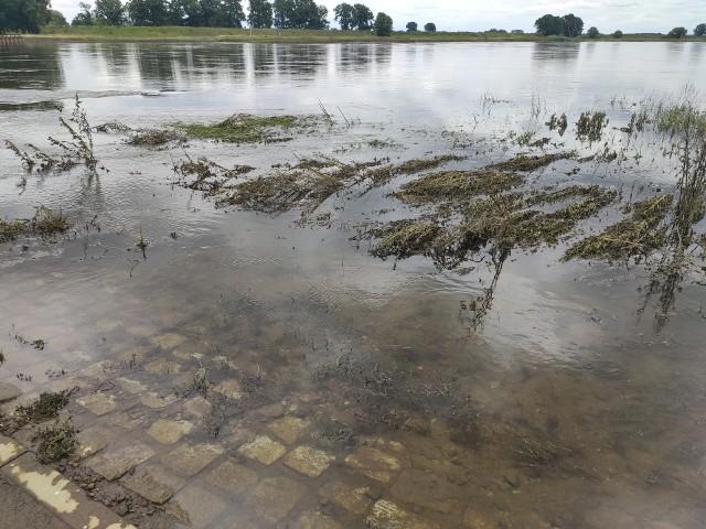 Poziom wody w Odrze jest bardzo wysoki. W najbliższym czasie prom nadal nie będzie kursował.