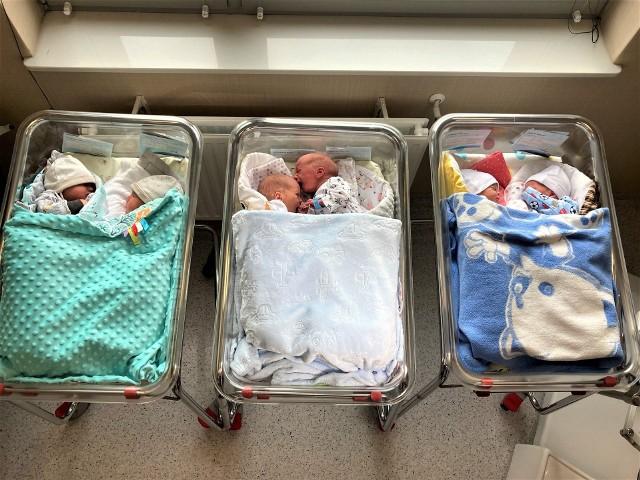 W Piekarskim Centrum Medycznym w jednym tygodniu przyszły na świat trzy pary bliźniąt. Zobacz kolejne zdjęcia. Przesuwaj zdjęcia w prawo - naciśnij strzałkę lub przycisk NASTĘPNE