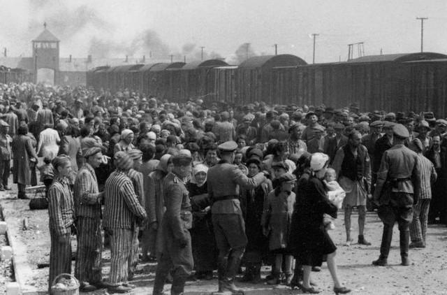 Selekcja na rampie w Auschwitz