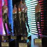 Wektory 2009: PGE otrzymała statuetkę - zobacz kto jeszcze