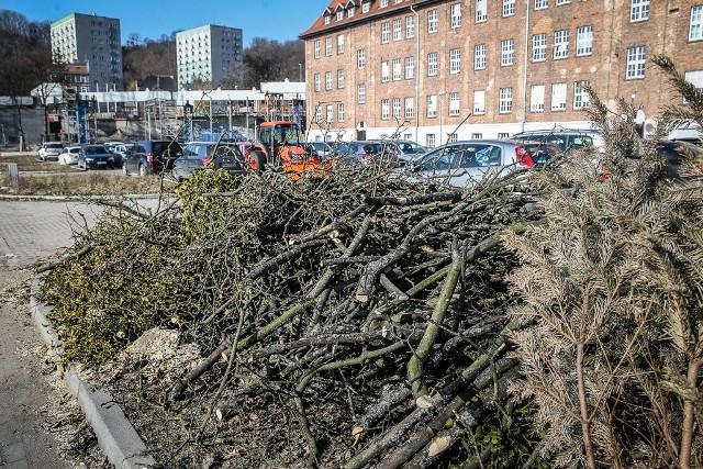 Z terenu położonego za budynkiem Urzędu Marszałkowskiego w Gdańsku zniknęło ponad dwadzieścia drzew. Ich wycinka rozpoczęła się w środę, 27.02.2019r., i zakończyła jeszcze tego samego dnia.
