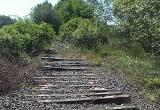 Dawne trasy kolejowe są rozkradzione lub zniszczone. Warto je remontować? Jest pomysł, aby zrobić ścieżki rowerowe na nasypach kolejowych