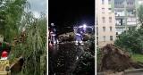 Podhale. Powalone drzewa, uszkodzone dachy. To była bardzo niespokojna noc pod Tatrami