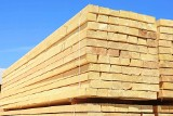 Sprawdzone drewno konstrukcyjne. Gdzie kupić?